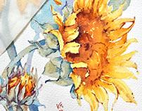 Botanical illustration - 2