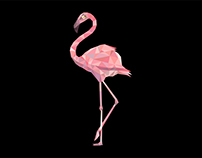 Flamingo Graphics