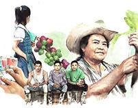 Microfinances BBVA Annual Report