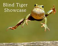 Blind Tiger Semester 24