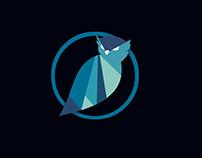 Blue Owl Risk Advisors Logo and Branding