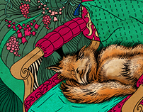 Illustrations of foxes