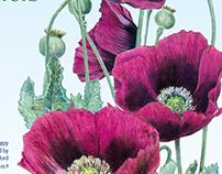 Botanical Interests Spring 2016 Mini Catalog Mailer
