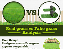 Real grass vs Fake grass Analysis