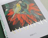 Amazonia Brochure