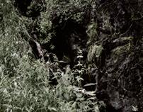 Luxury of Silence - Hommage à Kaljo Põllu
