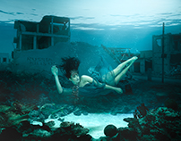 Aminas Dream by Julie Nagel