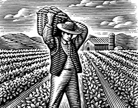 First Harvest Labels Illustrated by Steven Noble