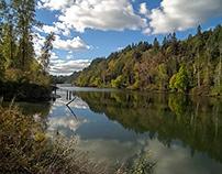 River Sloughs I
