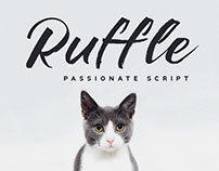 Ruffle - Casual Brush Font