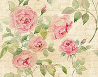 Watercolor English rose. Pattren.