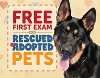 Bethany Family Pet Clinic - Case Study