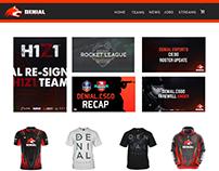 Denial Website Mock up