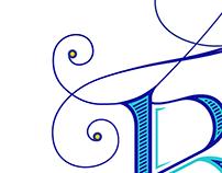 VERSÕES - Logo Peacock Blue