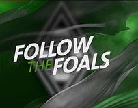 Follow the Foals