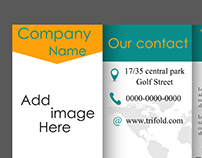 Professional business three fold flyer template.