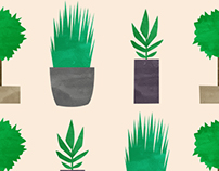 Pattern Design (Plants)
