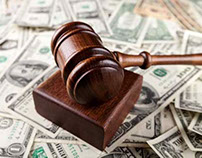 Support for Quick and Reliable Litigation Solutions