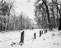 A Snowy Sunday Afternoon - Part 2 ( Medium Format Film)