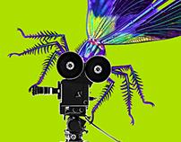 Poster for the GREEN SCREEN Wildlife Film Festival