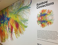 MIT BCS Brain Mural - Rainbow Connections
