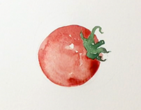 Tomato tutorial
