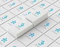 Sea Collection brand identity