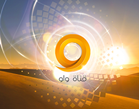 Saudi Television Network