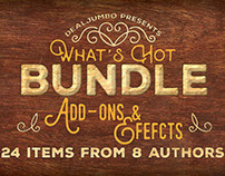 What's Hot Bundle v.13 – Add-ons & Efefcts