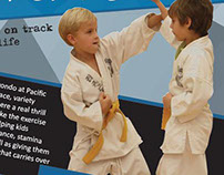 Tae Kwon Do Flyer