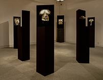 """OPUS-ある錬金術師の-"" Solo Exhibition"