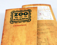 Animal Brochure: Chameleon