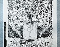 Bear skills