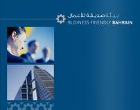 IGB Brochure