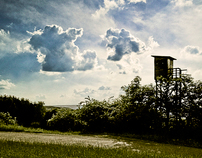 stumbled upon | Landscapes