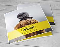 Square Trifold Brochure 2