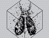 Escaravel