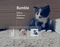 Meet Bumble