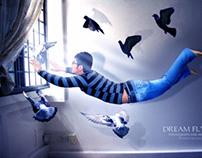 DREAM FLYING...