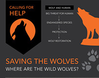 Saving the Wolves // Infographic Poster