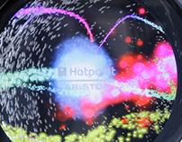 Indesit Company - Aqualtis Hotpoint
