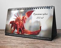Calendar Origami