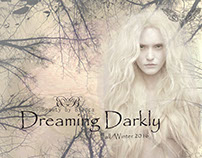 Dreaming Darkly-Illustrator