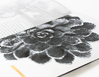 Karl Blossfeldt Photography Brochure