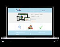 Ostia Solutions Website Design