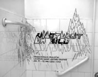 Laser Summit Campaign