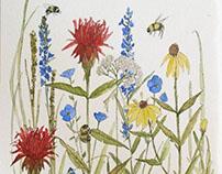 Nature Art Watercolor Illustrations