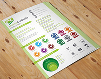 Infographic Curriculum