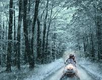Winter landscape - Paisaje de invierno