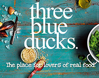 Three Blue Ducks - Newsletter Template